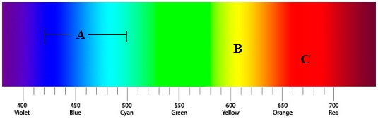 visible spectrum of light used by reef corals to grow.jpg