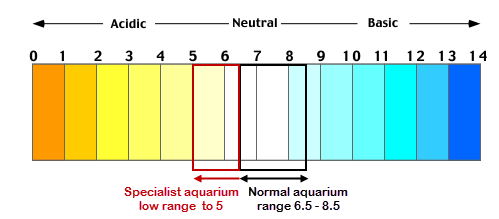 ph scale for fish keeping.png